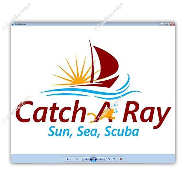 catch a ray